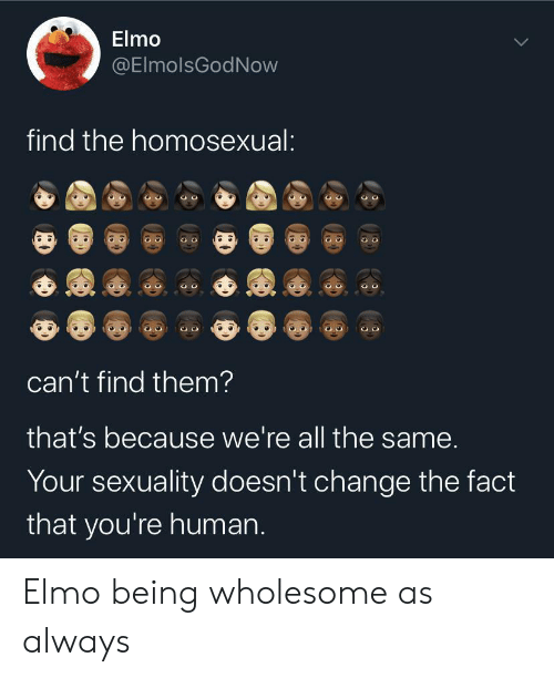 Elmo, Wholesome, and Change: Elmo  @ElmolsGodNow  find the homosexual:  can't find them?  that's because we're all the same.  Your sexuality doesn't change the fact  that you're human. Elmo being wholesome as always