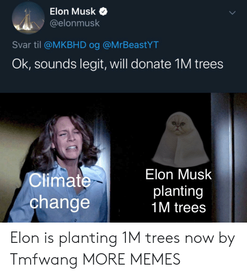 til: Elon Musk  @elonmusk  Svar til @MKBHD og @MrBeastYT  Ok, sounds legit, will donate 1M trees  Elon Musk  Climate  planting  1M trees  change Elon is planting 1M trees now by Tmfwang MORE MEMES