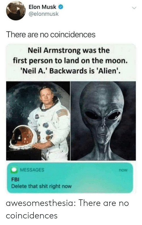 Musk Elonmusk: Elon Musk  @elonmusk  There are no coincidences  Neil Armstrong was the  first person to land on the moon.  'Neil A.' Backwards is 'Alien'  MESSAGES  now  FBI  Delete that shit right now awesomesthesia:  There are no coincidences