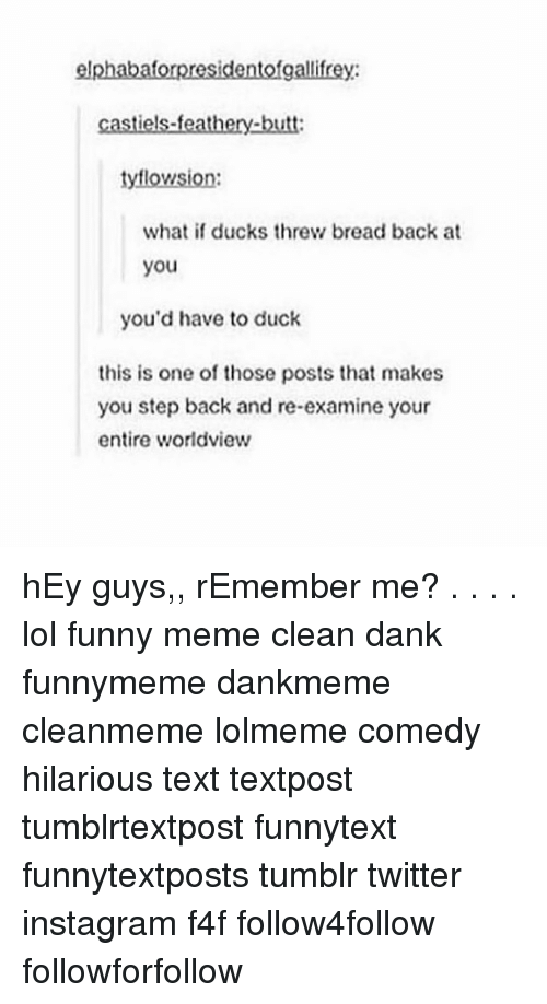 Memes Cleans: elphabaforpresidentofgallifrey:  castiels-feathery-butt  tyflowsion  what if ducks threw bread back at  you  you'd have to duck  this is one of those posts that makes  you step back and re-examine your  entire worldview hEy guys,, rEmember me? . . . . lol funny meme clean dank funnymeme dankmeme cleanmeme lolmeme comedy hilarious text textpost tumblrtextpost funnytext funnytextposts tumblr twitter instagram f4f follow4follow followforfollow