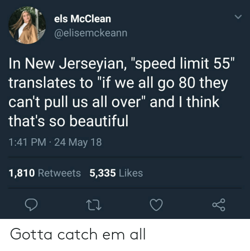 """els: els McClean  @elisemckeann  In New Jerseyian, """"speed limit 55""""  translates to """"if we all go 80 they  can't pull us all over"""" and I think  that's so beautiful  1:41 PM 24 May 18  1,810 Retweets 5,335 Likes Gotta catch em all"""