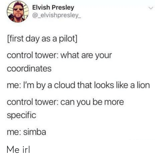Control, Cloud, and Lion: Elvish Presley  @elvishpresley  [first day as a pilot]  control tower: what are your  coordinates  me: I'm by a cloud that looks like a lion  control tower: can you be more  specific  me: simba  > Me irl