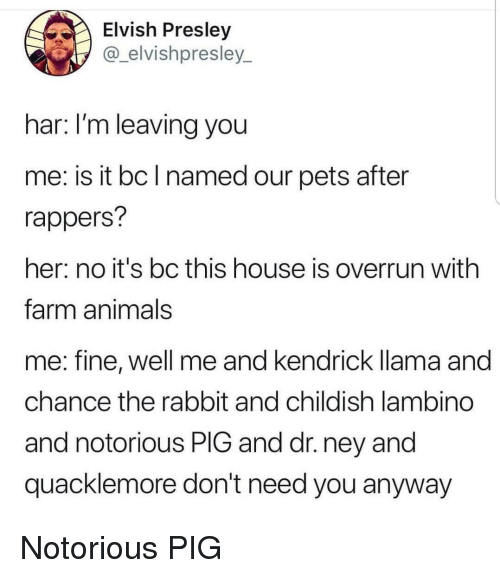 notorious: Elvish Presley  @_elvishpresley_  har: I'm leaving you  me: is it bc l named our pets after  rappers?  her: no it's bc this house is overrun with  farm animals  me: fine, well me and kendrick llama and  chance the rabbit and childish lambino  and notorious PIG and dr. ney and  quacklemore don't need you anyway Notorious PIG