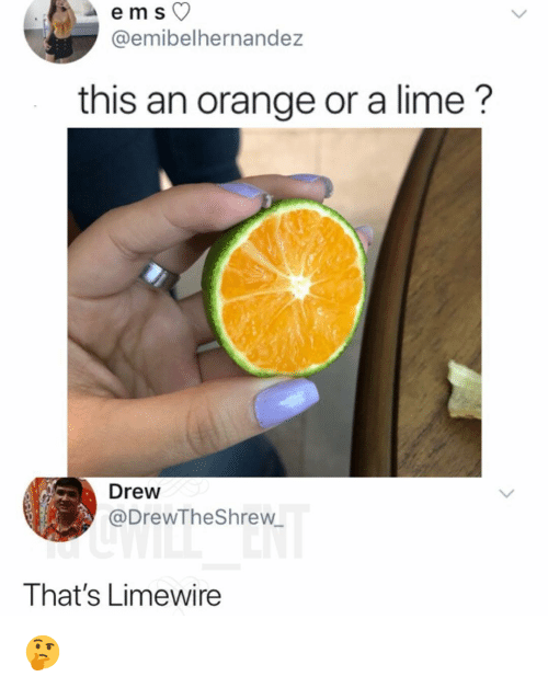 limewire: @emibelhernandez  this an orange or a lime?  Drew  @DrewTheShrew  That's Limewire 🤔