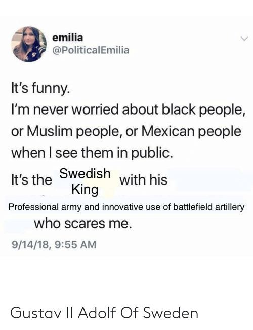 innovative: emilia  @PoliticalEmilia  It's funny.  I'm never worried about black people,  or Muslim people, or Mexican people  when I see them in public.  It's the Swedish  Professional army and innovative use of battlefield artillery  with his  King  who scares me  9/14/18, 9:55 AM Gustav II Adolf Of Sweden
