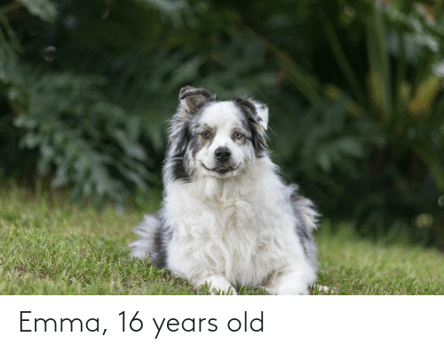 Old, Emma, and  Years: Emma, 16 years old