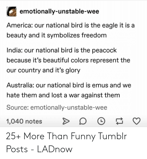 America, Beautiful, and Funny: emotionally-unstable-wee  America: our national bird is the eagle it is a  beauty and it symbolizes freedom  India: our national bird is the peacock  because it's beautiful colors represent the  our country and it's glory  Australia: our national bird is emus and we  hate them and lost a war against them  Source: emotionally-unstable-wee  1,040 notes 25+ More Than Funny Tumblr Posts - LADnow