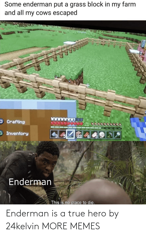 more: Enderman is a true hero by 24kelvin MORE MEMES