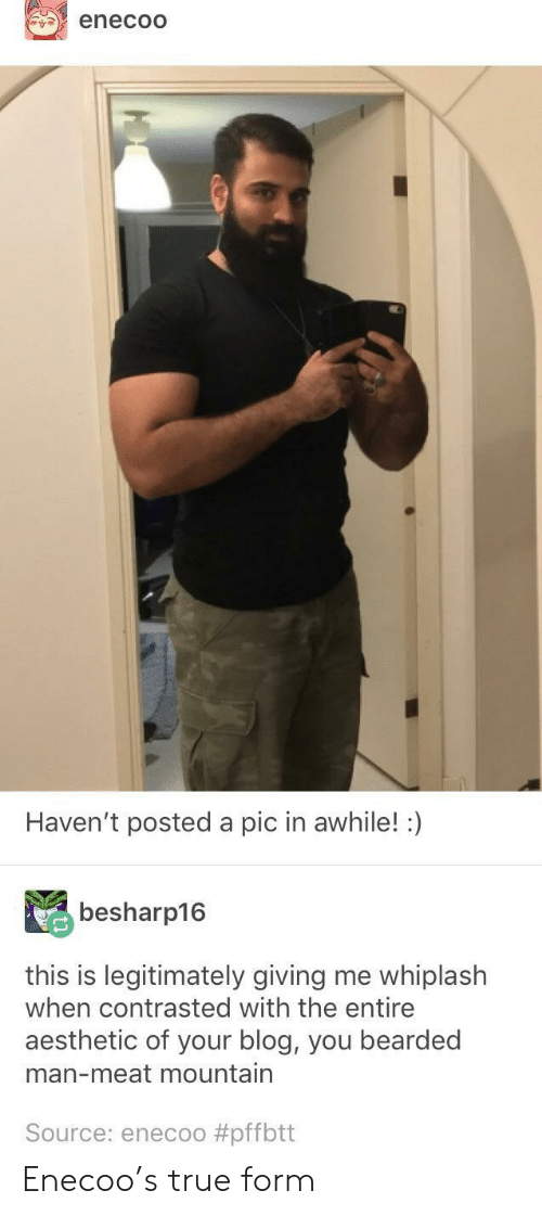 True, Aesthetic, and Blog: enecoO  Haven't posted a pic in awhile!  besharp16  this is legitimately giving me whiplash  when contrasted with the entire  aesthetic of your blog, you bearded  man-meat mountain  Source: enecoo Enecoo's true form