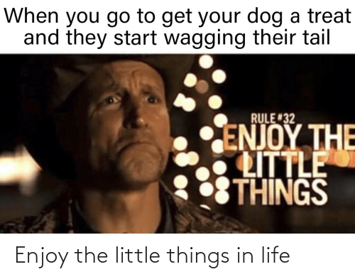 little things: Enjoy the little things in life