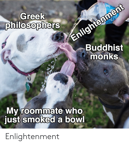 buddhist: Enlightenment  Buddhist  monks  Greek  philosophers  My roommate who  just smoked a bowl Enlightenment