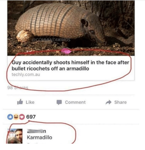 armadillo: ENTAWARD  uy accidentally shoots himself in the face after  bullet ricochets off an armadillo  techly.com.au  Like  Comment  Share  69  Karmadillo
