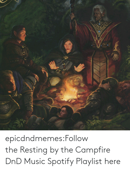 Music: epicdndmemes:Follow the Resting by the Campfire DnD Music Spotify Playlist here