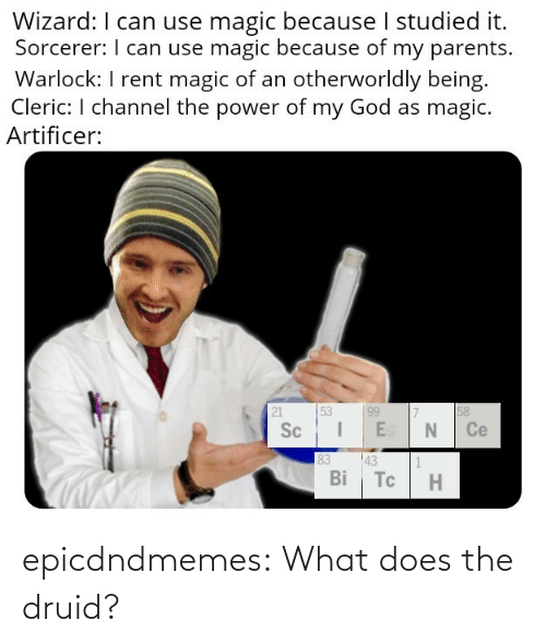 A Href: epicdndmemes:  What does the druid?