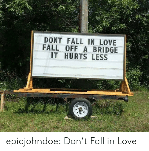 Fall, Love, and Tumblr: epicjohndoe:  Don't Fall in Love