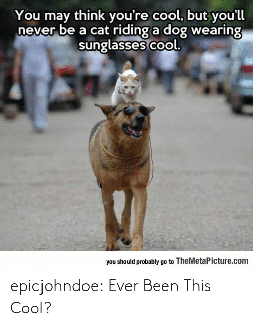 Been: epicjohndoe:  Ever Been This Cool?