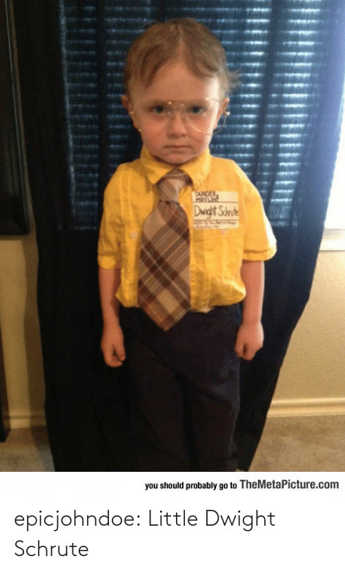 dwight: epicjohndoe:  Little Dwight Schrute