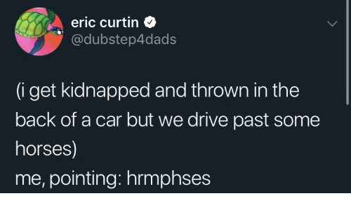pointing: eric curtin  @dubstep4dads  (i get kidnapped and thrown in the  back of a car but we drive past some  horses)  me, pointing: hrmphses