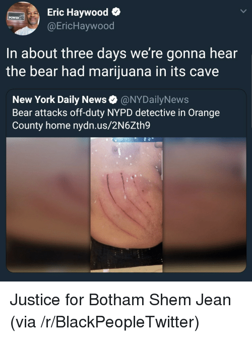 Nypd: Eric Haywood o  @EricHaywood  POWER  In about three days we're gonna hear  the bear had marijuana in its cave  New York Daily News Ф @NYDailyNews  Bear attacks off-duty NYPD detective in Orange  County home nydn.us/2N6Zth9 Justice for Botham Shem Jean (via /r/BlackPeopleTwitter)