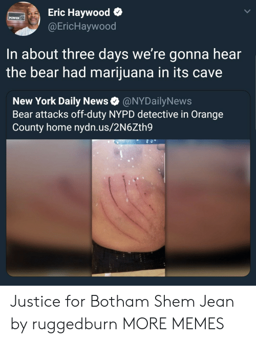 Nypd: Eric Haywood o  @EricHaywood  POWER  In about three days we're gonna hear  the bear had marijuana in its cave  New York Daily News Ф @NYDailyNews  Bear attacks off-duty NYPD detective in Orange  County home nydn.us/2N6Zth9 Justice for Botham Shem Jean by ruggedburn MORE MEMES
