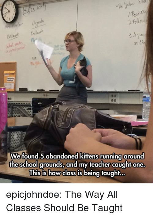 School, Teacher, and Tumblr: es  on  Wefound 5 abandoned kittens running around  the school grounds,and my teacher caught one.  This is howclass is being taught... epicjohndoe:  The Way All Classes Should Be Taught