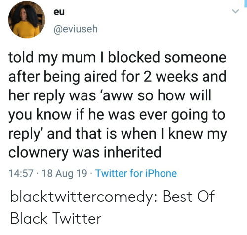 aww: eu  @eviuseh  told my mum I blocked someone  after being aired for 2 weeks and  her reply was 'aww so how will  you know if he was ever going to  reply' and that is when I knew my  clownery was inherited  14:57 18 Aug 19 Twitter for iPhone blacktwittercomedy:  Best Of Black Twitter