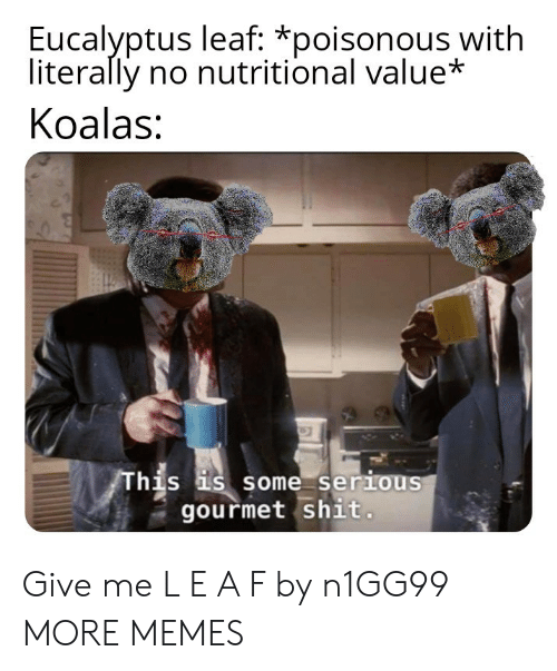 Nutritional: Eucalyptus leaf: *poisonous with  literally no nutritional value*  Koalas:  his s some serious  gourmet shit Give me L E A F by n1GG99 MORE MEMES
