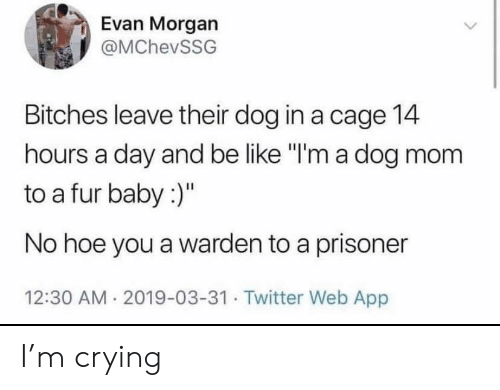 "prisoner: Evan Morgan  @MChevSSG  Bitches leave their dog in a cage 14  hours a day and be like ""I'm a dog mom  to a fur baby :)""  No hoe you a warden to a prisoner  12:30 AM 2019-03-31. Twitter Web App I'm crying"