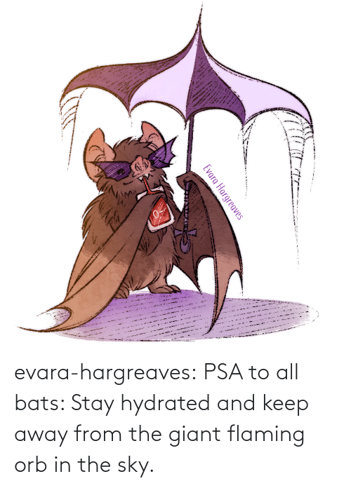 psa: evara-hargreaves:  PSA to all bats: Stay hydrated and keep away from the giant flaming orb in the sky.