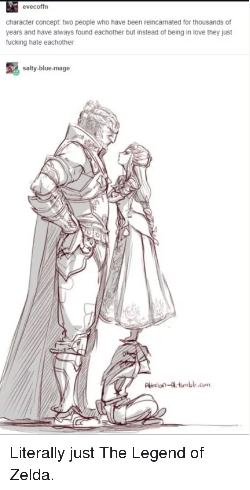 legend of zelda: evecoffrn  character concept two people who have been reincamated for thousands of  years and have always found eachother but instead of being in love they just  fucking hate eachother  salty-blue-mage  Pie-tumblr.com Literally just The Legend of Zelda.