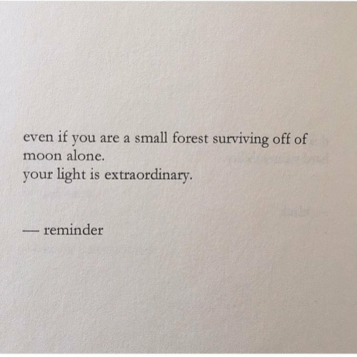Being Alone, Moon, and Forest: even if you are a small forest surviving off of  moon alone.  your light is extraordinary.  reminder