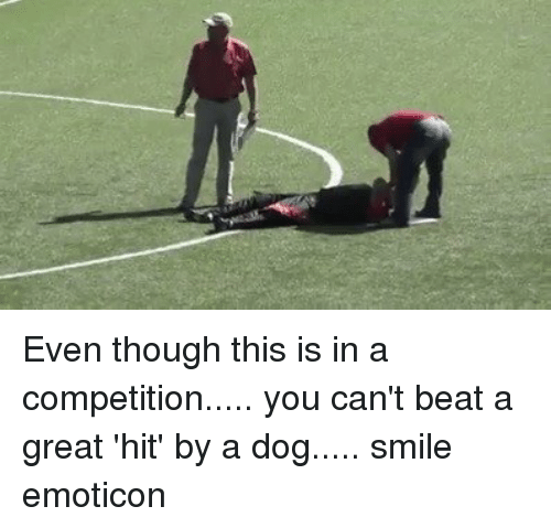 emoticons: Even though this is in a competition..... you can't beat a great 'hit' by a dog..... smile emoticon