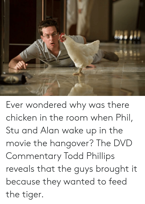 The Hangover, Hangover, and Chicken: Ever wondered why was there chicken in the room when Phil, Stu and Alan wake up in the movie the hangover? The DVD Commentary Todd Phillips reveals that the guys brought it because they wanted to feed the tiger.
