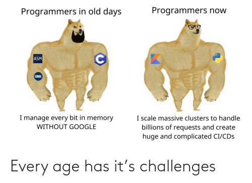 Has: Every age has it's challenges
