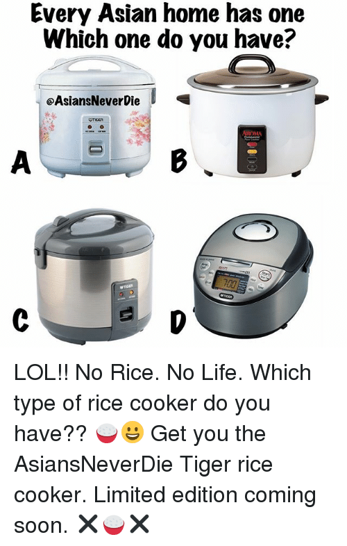 No Lifes: Every Asian home has one  Which one do you have?  OAsiansNeverbie  AROMA LOL!! No Rice. No Life. Which type of rice cooker do you have?? 🍚😀 Get you the AsiansNeverDie Tiger rice cooker. Limited edition coming soon. ✖️🍚✖️