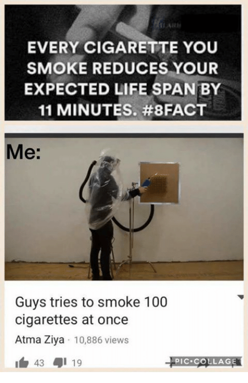 atma: EVERY CIGARETTE YOU  SMOKE REDUCES YOUR  EXPECTED LIFE SPAN BY  11 MINUTES. #8FACT  Me:  Guys tries to smoke 100  cigarettes at once  Atma Ziya 10,886 views  43 19  PIC COLLAGE