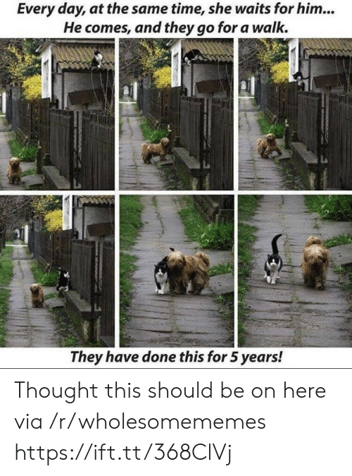 5 Years: Every day, at the same time, she waits for him...  He comes, and they go for a walk.  They have done this for 5 years! Thought this should be on here via /r/wholesomememes https://ift.tt/368ClVj