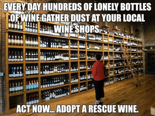 Wine, Act, and Local: EVERY DAY HUNDREDS OF LONEIY BOTTLES  OFWINE GATHER DUST AT YOUR LOCAL  ACT NOW.. ADOPT A RESCUE WINE.