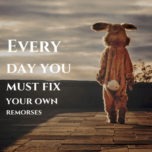 Day, Own, and You: EVERY  DAY YOU  MUST FIX  YOUR OWN  REMORSES
