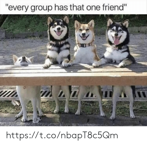 """Memes, 🤖, and One: """"every group has that one friend"""" https://t.co/nbapT8c5Qm"""