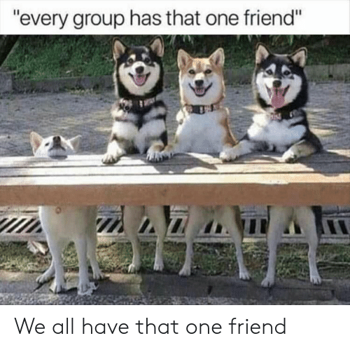 """One, Friend, and Group: """"every group has that one friend"""" We all have that one friend"""