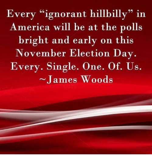 "America, Ignorant, and Memes: Every ""ignorant hillbilly"" in  America will be at the polls  bright and early on this  November Election Day.  Every. Single. One. Of. Us.  James Woods"