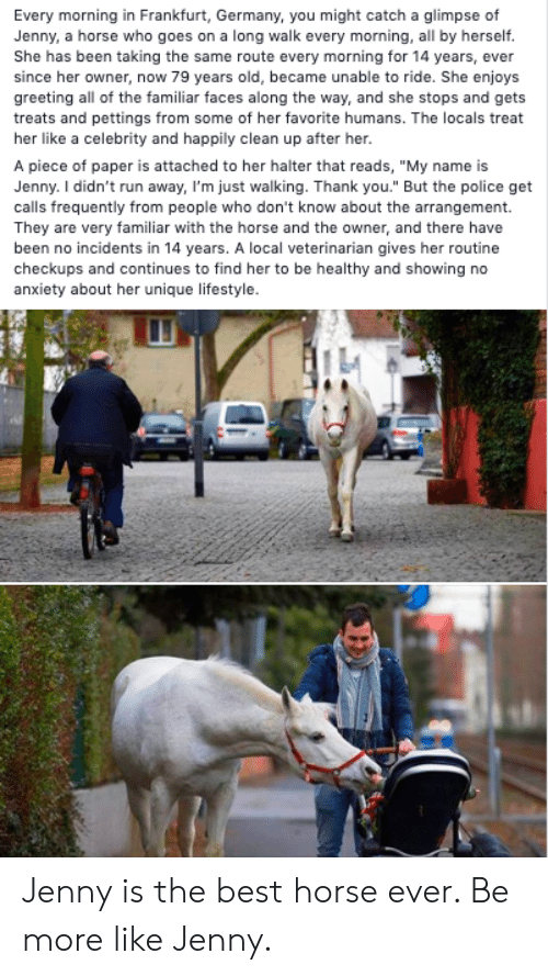 "Veterinarian: Every morning in Frankfurt, Germany, you might catch a glimpse of  Jenny, a horse who goes on a long walk every morning, all by herself.  She has been taking the same route every morning for 14 years, ever  since her owner, now 79 years old, became unable to ride. She enjoys  greeting all of the familiar faces along the way, and she stops and gets  treats and pettings from some of her favorite humans. The locals treat  her like a celebrity and happily clean up after her.  A piece of paper is attached to her halter that reads, ""My name is  Jenny. I didn't run away, I'm just walking. Thank you."" But the police get  calls frequently from people who don't know about the arrangement.  They are very familiar with the horse and the owner, and there have  been no incidents in 14 years. A local veterinarian gives her routine  checkups and continues to find her to be healthy and showing no  anxiety about her unique lifestyle. Jenny is the best horse ever. Be more like Jenny."