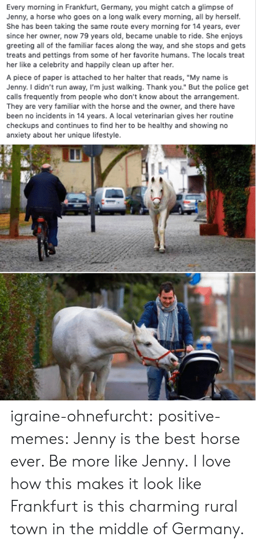 "Incidents: Every morning in Frankfurt, Germany, you might catch a glimpse of  Jenny, a horse who goes on a long walk every morning, all by herself.  She has been taking the same route every morning for 14 years, ever  since her owner, now 79 years old, became unable to ride. She enjoys  greeting all of the familiar faces along the way, and she stops and gets  treats and pettings from some of her favorite humans. The locals treat  her like a celebrity and happily clean up after her.  A piece of paper is attached to her halter that reads, ""My name is  Jenny. I didn't run away, I'm just walking. Thank you."" But the police get  calls frequently from people who don't know about the arrangement.  They are very familiar with the horse and the owner, and there have  been no incidents in 14 years. A local veterinarian gives her routine  checkups and continues to find her to be healthy and showing no  anxiety about her unique lifestyle. igraine-ohnefurcht: positive-memes: Jenny is the best horse ever. Be more like Jenny.  I love how this makes it look like Frankfurt is this charming rural town in the middle of Germany."