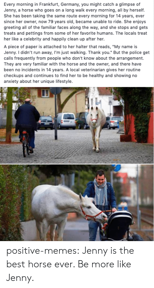 "Incidents: Every morning in Frankfurt, Germany, you might catch a glimpse of  Jenny, a horse who goes on a long walk every morning, all by herself.  She has been taking the same route every morning for 14 years, ever  since her owner, now 79 years old, became unable to ride. She enjoys  greeting all of the familiar faces along the way, and she stops and gets  treats and pettings from some of her favorite humans. The locals treat  her like a celebrity and happily clean up after her.  A piece of paper is attached to her halter that reads, ""My name is  Jenny. I didn't run away, I'm just walking. Thank you."" But the police get  calls frequently from people who don't know about the arrangement.  They are very familiar with the horse and the owner, and there have  been no incidents in 14 years. A local veterinarian gives her routine  checkups and continues to find her to be healthy and showing no  anxiety about her unique lifestyle. positive-memes:  Jenny is the best horse ever. Be more like Jenny."