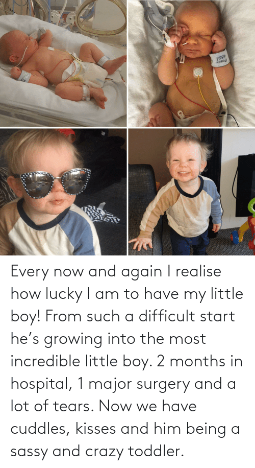toddler: Every now and again I realise how lucky I am to have my little boy! From such a difficult start he's growing into the most incredible little boy. 2 months in hospital, 1 major surgery and a lot of tears. Now we have cuddles, kisses and him being a sassy and crazy toddler.