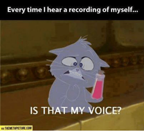 Heared: Every time I hear a recording of myself...  IS THAT MY VOICE?  MA THEMETAPICTURE.COM