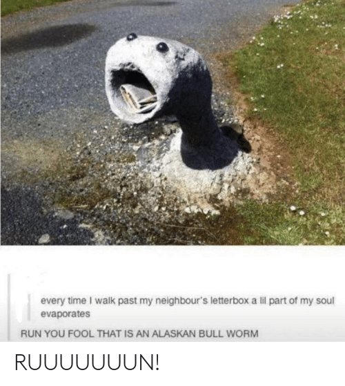 neighbours: every time I walk past my neighbour's letterbox a lil part of my soul  evaporates  RUN YOU FOOL THAT IS AN ALASKAN BULL WORM RUUUUUUUN!