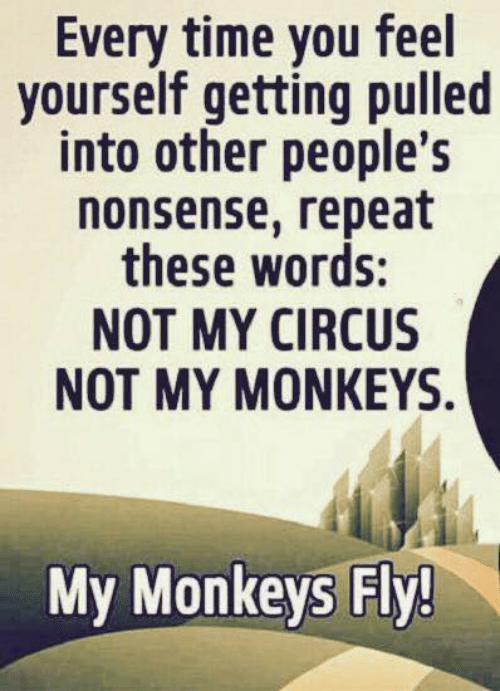 Dank, Time, and Nonsense: Every time you feel  yourself getting pulled  into other people's  nonsense, repeat  these words:  NOT MY CIRCUS  NOT MY MΟNΚΕYS.  My Monkeys Fly!