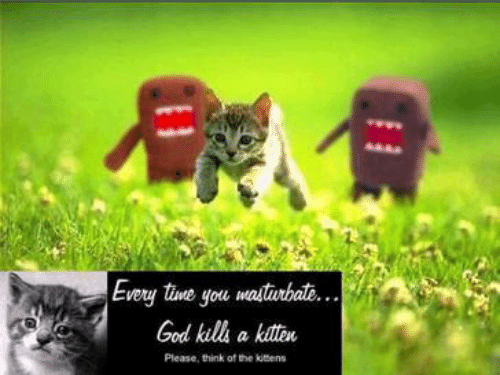 kitten: Every tine you masturbat...  God kills a kitten  Please, think of the kitens
